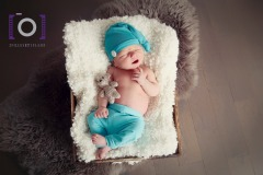 bébé, enfant, nouveau-né, portrait, studio, naissance,